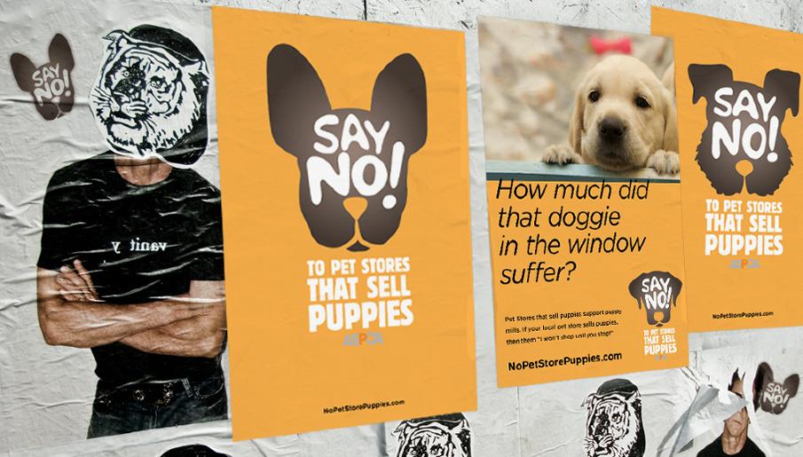 ASPCA's Puppy Mill campaign - Preethi Chethan | Portfolio